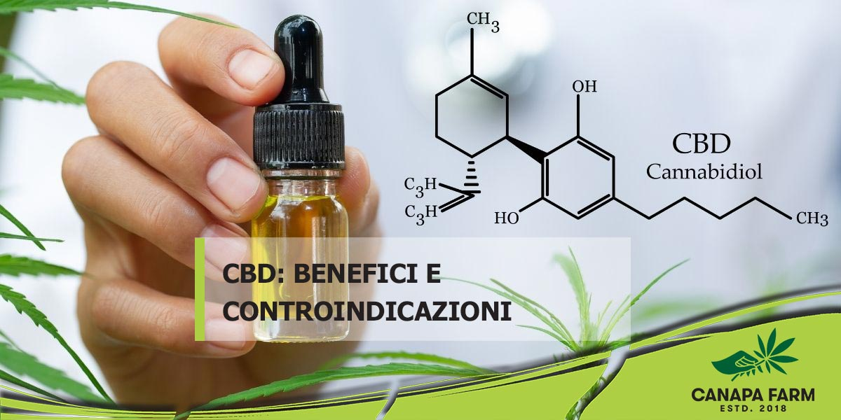 cannabidiolo effetti cbd