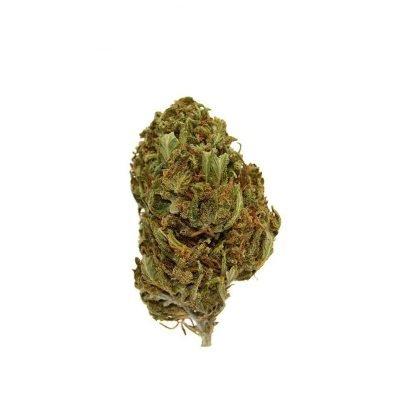 virtual light cannabis legale