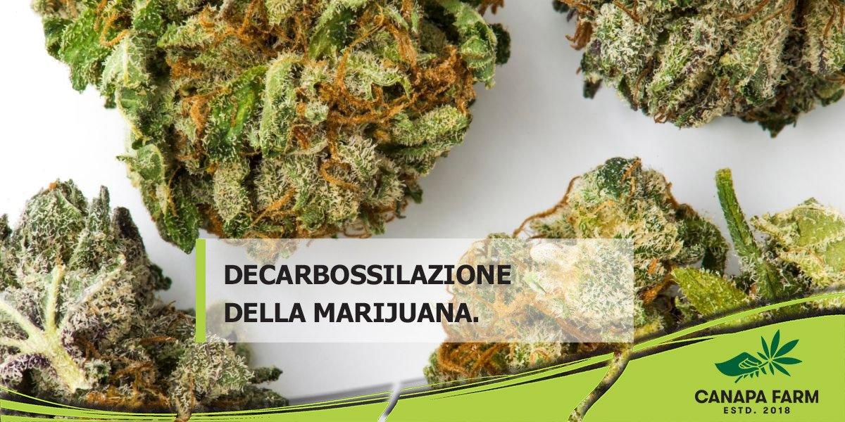 decarbossilazione marijuana