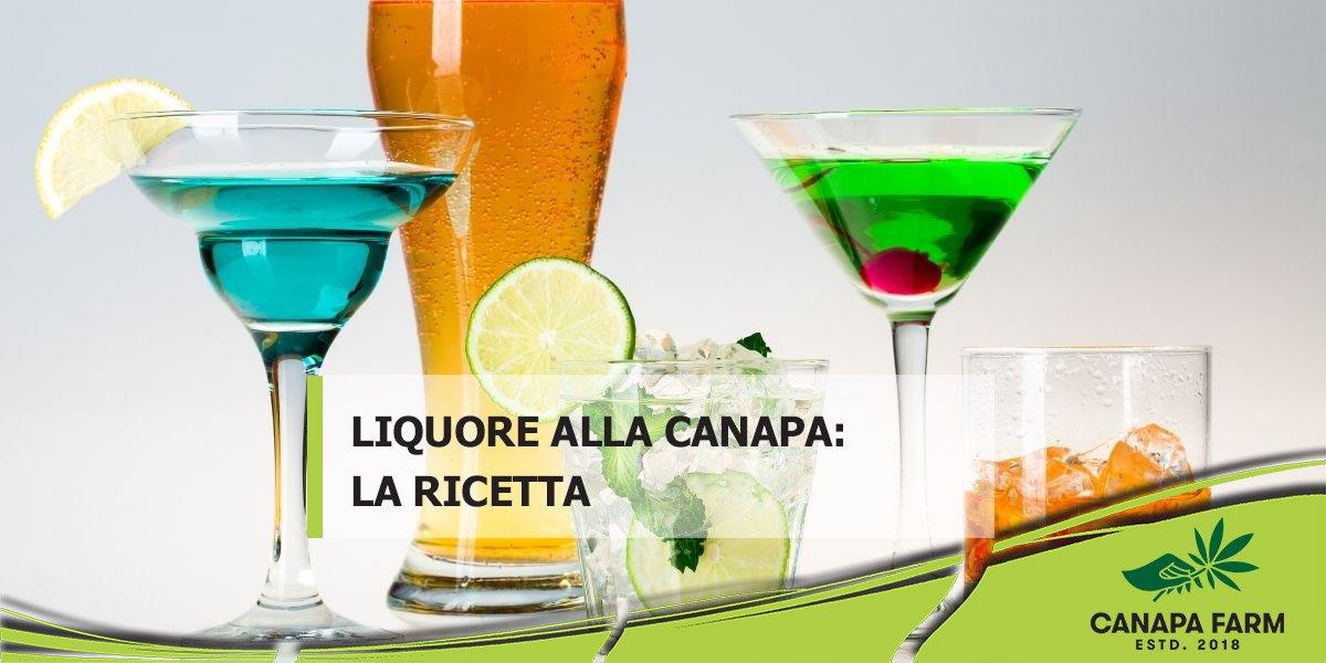 liquore alla canapa canapito